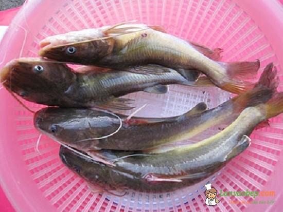 Cách làm cá lăng hết mùi tanh khi chế biến món ăn